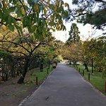Jardin Japones ภาพถ่าย
