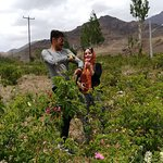Abyaneh village and beautifull rose field with yosuf our tour guide