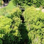 overgrown lock