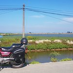 We travel past the rice fields and fish farms.