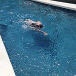 piscine 20 mètres chauffée toute l année