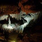 Tuckaleechee Caverns ภาพถ่าย