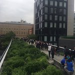 High Line Photo