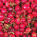 ciliege bio mercatino frutta e bio tutte le Domeniche Al CARGO SOTTOVENTO .