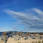 Playa del Puerto de Pollensa Resmi