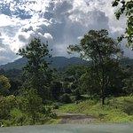 صورة فوتوغرافية لـ Canopy Safari