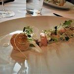 Fresh crab and shrimps Nordigues – Fennel puree and marinated shelfish mayonnaise,