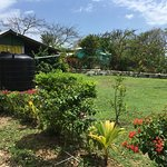 Gorgeous gardens this one acre property with enough space to have some privacy too
