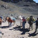 Salkantay Trail Peru Trekking Company Foto