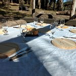 Almuerzos especiales en medio de la naturaleza.