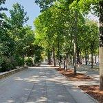 Stadtpark ภาพถ่าย