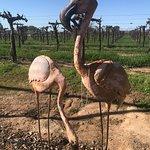 Metal Flamingos in the Garden!