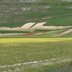 Piana di Castelluccio di Norcia Photo