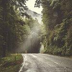 Conuntry road