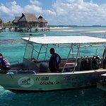Le bateau de Tikehau Plongée