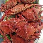 Navalheiras/ Boiled Crab.