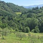 Bio Agriturismo Il Vigno Image