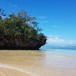 Ecotrax Fiji-bild