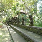 The row of sculptures outside one of the small temples in the Forest