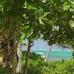 Matachica Resort Photo