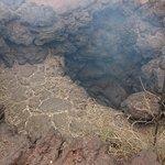 Timanfaya National Park ภาพถ่าย