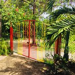 Private entrance for fenced and gated property with 24/7's security. No curfew, gate key supplie