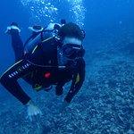 Diving Dauin