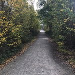 Foto de Riesling Trail