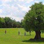 football course