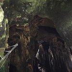 Gomantong Cave Sandakan