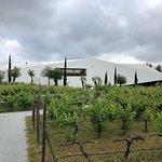 Foto de L'AND Vineyards