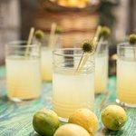 Enjoy our delicious home-made refreshing lemonade