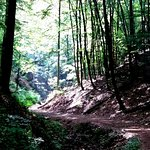 Photo of Drachenschlucht / Landgrafenschlucht