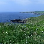 Porthor and the Whistling Sands Walk