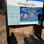 Wineglass Bay Day Tours照片