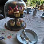 Cake &Tea Break! Delicious~