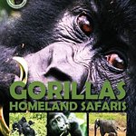 For Gorillas and other games safaris in Uganda and Rwanda