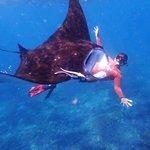 swim with manta rays nusa penida