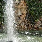 Bilde fra Del Dotto Estate Winery & Caves