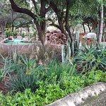 Monateng Safari Lodge Photo
