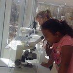 Butanta Institute - SP / Brazil - Microbiological Museum