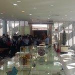 Butanta Institute - SP / Brazil - Microbiological Museum - Overview