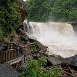 Muddy day at the falls