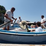 Laser Capri Boat Tours...