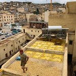 yellow tannery