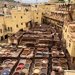 tanneries from central shop