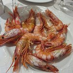 Gambas rouges fraîches