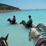 Lucky Stables Trail Ride, St. Maarten