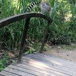 Foto de Zoo Kaiserslautern