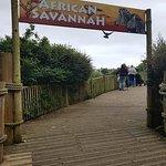 Newquay Zoo Foto